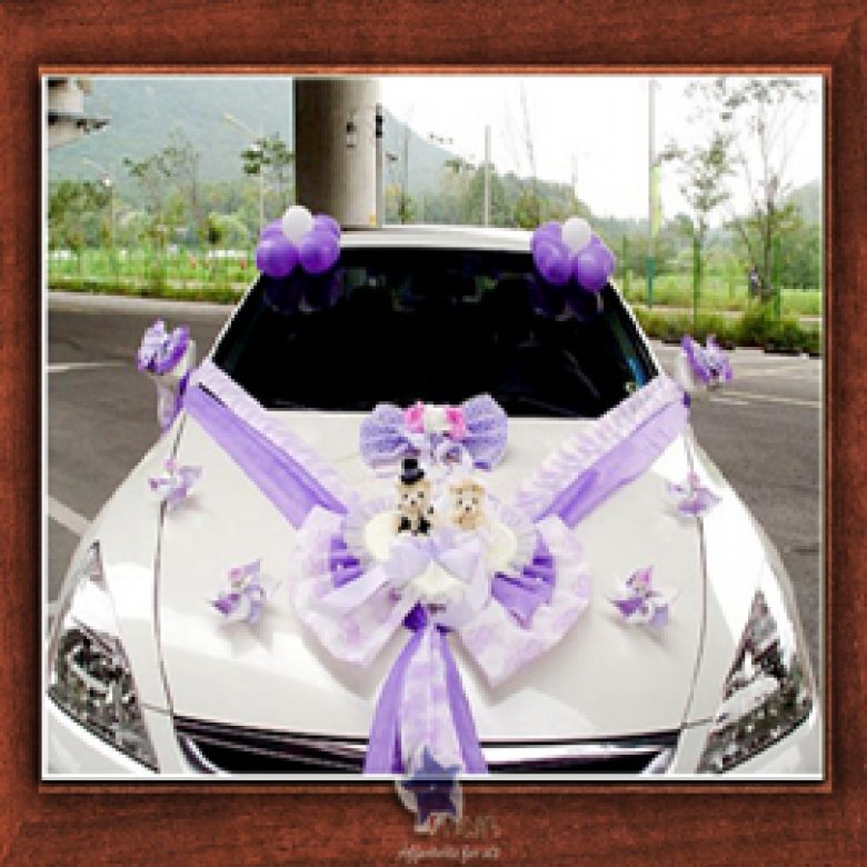 Weeding Car Design- Frame No- 819