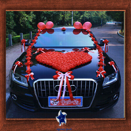 Weeding Car Design- Frame No- 824